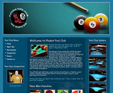 Pool players from around the world can enjoy the nine Brunswick tournament pool tables located in the spacious air conditioned carpeted pool hall.